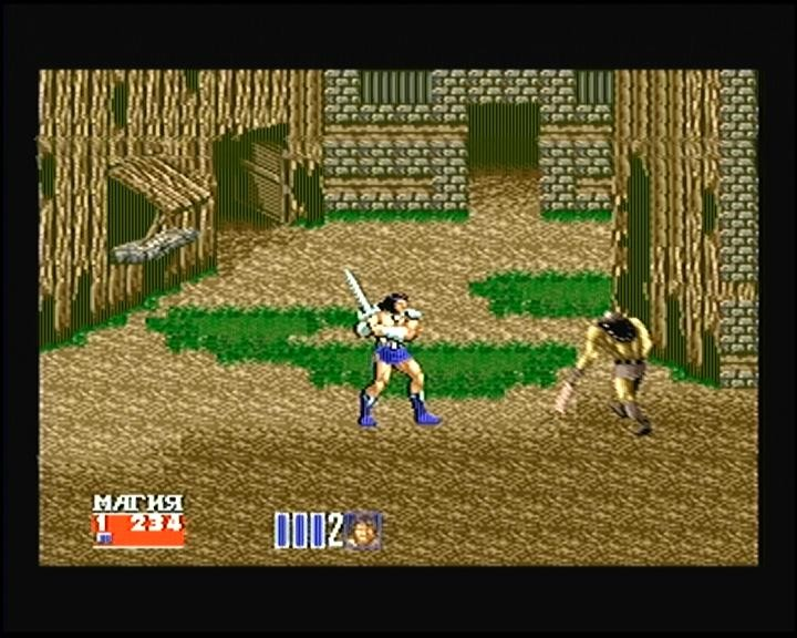 Картридж Сборник игр 10 в 1 AC10001 Sonic 3D Blast/Earthworm Jim 2/Jungle Book/Sylvester and Tweety (16 bit) для Сега
