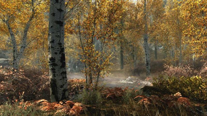 The Elder Scrolls 5 (V): Skyrim VR (Только для PS VR) Русская версия (PS4)