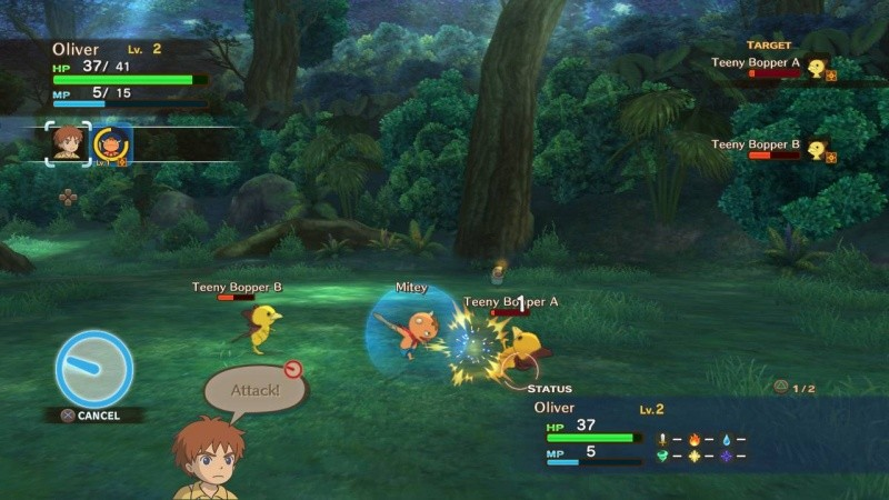Ni no Kuni: Wrath of the White Witch (Гнев Белой ведьмы) (PS3)